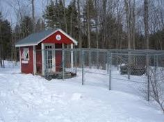 Large Chicken Coop Plans, Cheap Chicken Coops, Building A Chicken Coop, Winter Time, House Styles, Gardening, Outdoor, Warm, Google Search