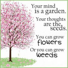 Your mind is a garden, your thoughts are the seeds, you can grow flowers, or you can grow weeds. I think this would be an awesome quote to put up in the school room. Life Quotes Love, Great Quotes, Inspirational Quotes, Amazing Quotes, Motivational Thoughts, Uplifting Quotes, Admire Quotes, Superb Quotes, Uplifting Thoughts