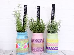 These rainbow tinted mason jars are perfect for your craft and DIY projects. Here is how to quickly and easily tint mason jars in beautiful pastel colors Mason Jar Herbs, Pot Mason Diy, Mason Jar Planter, Mason Jar Flowers, Mason Jar Crafts, Flower Pots, Pots Mason, Tinted Mason Jars, Luminaire Original