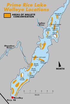 rice lake ontario map 41 Best Rice Lake Ontario Canada Images In 2020 Rice Lake rice lake ontario map
