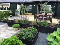 inspiration trädgård radhus - This can be done in most gardens as it is so simple, yet effective! Terrace Garden, Garden Planters, Vegetable Garden, Garden Boxes, Back Gardens, Outdoor Gardens, Raised Garden Beds, Raised Bed, Ikebana