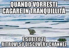 #barzellette #meme #aforisma #aforismi #freddure #risate #fotomontaggio #fotodivertenti #instalike #followme #funnypictures #fun #bestoftheday #dayshots #mennozz #battutepessime #napoli #divertente #postdivertenti #memeita #lol