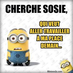 minions - Page 2 Minions Quotes, Jokes Quotes, Memes, Citation Minion, Minion 2, Train Of Thought, Erza Scarlet, Good Humor, Smiles And Laughs