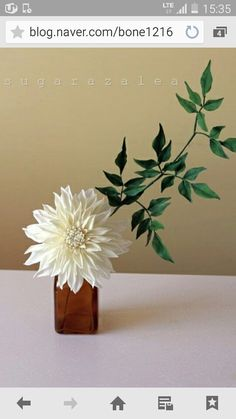 #cafe au lait dahlia sugarflower #gumpaste flower #dahlia #sugarcraft #korea