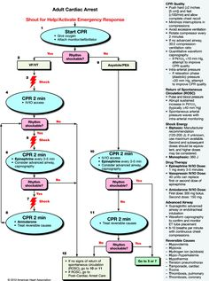 acls alogorhythm; pulseless vt or vf