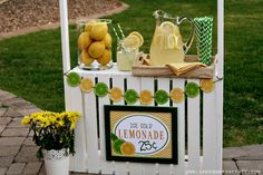 The kids want to open a lemonade stand? Elevate their business (and fun!) by handing over these easy lemonade stand snack recipes that they can make too.