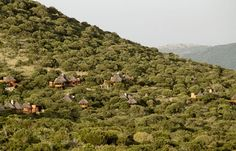 Thanda Game Reserve, South Africa