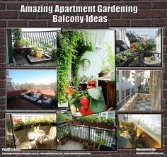 Apartment Garden Ideas beautiful 30 indoor apartment garden ideas really inspiring Garden Design With Creative Beautiful Garden Ideas On Pinterest Self Watering With Indoor Herb Garden From