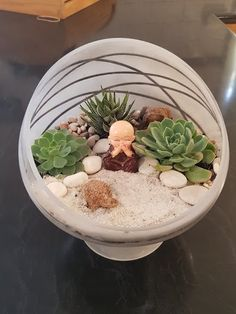 Slanted glass bowl repurposed into a succulent terrarium. The bowl was stray with frosted spray paint and given a zen garden theme. How to make your own themed succulent terrarium at home, using items you have ly Succulent Planter Diy, Succulents Garden, Garden Terrarium, Terrarium Wedding, Succulent Bowls, Indoor Succulents, Planter Ideas, Succulent Arrangements, Glass Terrarium