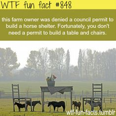 Seriously he was denied the right to build on his own property for his own animals? Fucking ridiculous.