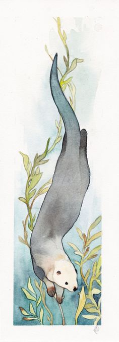 Loutre by Elk Otter Tattoo, Motifs Animal, Cool Sketches, Native American Art, Otters, Painting Inspiration, Watercolor Art, Art Drawings, Art Projects
