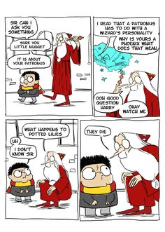 Phoenixes burn and so does dumbledore