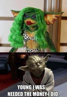 Even Yoda made some questionable life choices.