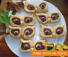 Kids Owl Cookie Recipe - Peanut Butter + Cashew + Chocolate Yummy Crunchy Fall Treats