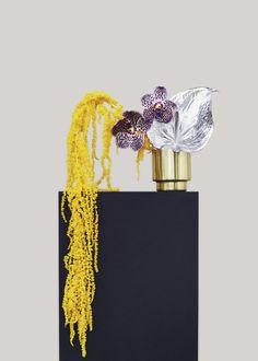 Ikebana Flower Arrangement, Ikebana Arrangements, Floral Arrangements, Flower Bomb, Flower Art, Floral Style, Floral Design, Floral Chandelier, Mood Images
