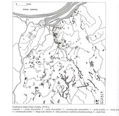 The area between Vistula River and Pasłęka River was a mixed area of Baltic(Prussian)-Slavic settlement - below a map showing settlements in this area in period between the 9th century and the 11th century (1, 2, 3 = Slavic strongholds, settlements and cemeteries; 4, 5, 6 = Baltic / Prussian strongholds, settlements and cemeteries), 7 - defensive walls (made of ground and wood), 8 - traces of Scandinavian settlement (traders, merchants, etc.) and 9 - Truso: