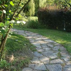 This kind of walkway stepping stones is honestly an interesting design approach. Flagstone Flooring, Garden Stepping Stones, Stone Walkway, Rooftop Garden, Garden Paths, Beautiful Gardens, Cool Designs, Sidewalk, Leaves