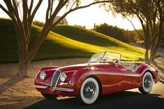 Monday Motoring: 1954 Jaguar XK120 SE Roadster--love this!!!