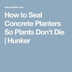 How to Seal Concrete Planters So Plants Don't Die | Hunker