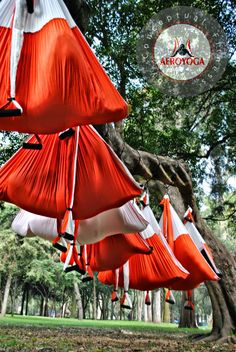 yoga swing, Foto de Rafael Martínez. Yoga Aereo, International Teacher Training, #aeroyoga #aeropilates #aero #yoga #pilates #fitness #coaching #chile #santiagodechile #argentina #buenosaires #wellness #bienestar #ejercicio #tendencias #moda #prensa #rafaelmartinez #yogaswing #gravity #gravedad #exercice #teachertraining #pilatesaereo #yogaaereo #acro #lima #peru #madrid #barcelona