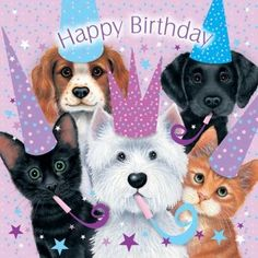 Adorable Happy Birthday Quote With Pets birthday happy birthday happy birthday wishes birthday quotes happy birthday quotes birthday quote happy birthday quotes for friends happy birthday quotes for family cute happy birthday quotes Dog Birthday Wishes, Birthday Clips, Happy Birthday Dog, Happy Birthday Pictures, Happy Birthday Messages, Happy Birthday Quotes, Cat Birthday, Happy Birthday Greetings, Animal Birthday
