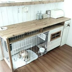 Fine-looking dog room ideas Puppy Room, Dog Crate Furniture, Indoor Rabbit, Dog Spaces, Cat Cave, Dog Rooms, Dog Houses, Diy Stuffed Animals, Dog Bed