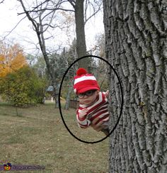 Where's Waldo? - Homemade costumes for boys