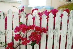 I'm going to attempt to build a fence like this from pallet materials.