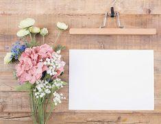 Flower Backgrounds, Photo Backgrounds, Wallpaper Backgrounds, Iphone Wallpaper, Framed Wallpaper, Flower Wallpaper, Book Background, Background Images, Murs Pastel