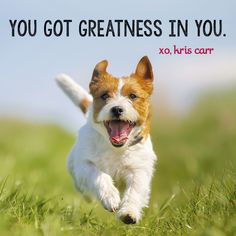 You got greatness in you. -Kris Carr Quote #wisdom #affirmations