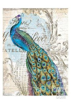 Peacock 1 Art Print by Ophelia & Co. at Art.com