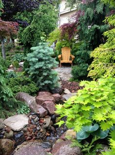 GardenRant: Lovely rock garden