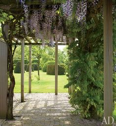 Love the contrast of the two garden areas.  // Great Gardens & Ideas //