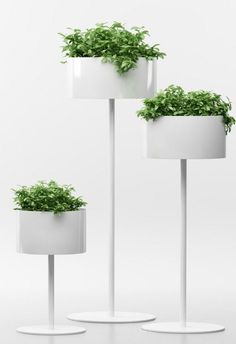 GREEN CLOUD Aluminium plant pot by Systemtronic