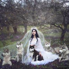 Jogue-me aos lobos e voltarei liderando a matilha.