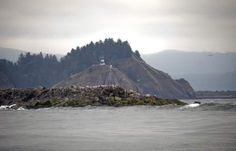The North Jetty at the mouth of the Columbia River