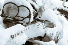Snow Fury (2 of 4).jpg