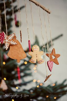 Christmas Decorations (no instructions...idea only)