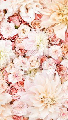 1080x1920 Hintergrundbilder, Handy Bilder, Englische Rosen, Hochzeit, Tapete Für Iphone, Nette Hintergrundbilder, Floralen Tapeten, Iphone Hinter, Handy Tapete