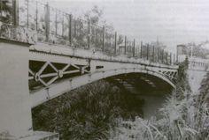 Este puente, el primer tramo enteramente de metal que se construyó en la isla y el único de arco metálico que existe en Puerto Rico.