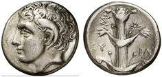 AR Didrachm. Greek Coin, Cyrenaica, Cyrene. About 300-280 BC. 7,56g. BMC 52, 238. VF. Price realized 2011: 1.200 USD.