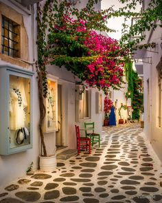 Alley of Paros island, Cyclades Beautiful Places To Travel, Wonderful Places, Beautiful World, Beautiful Gardens, Places Around The World, Travel Around The World, Around The Worlds, Balcony Plants, Beautiful Streets