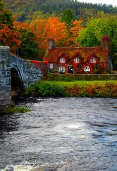 Forest House in Llanrwst, Conwy, Wales, #UK