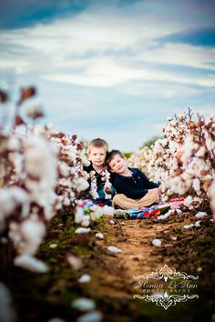 {Cotton Field} Brothers