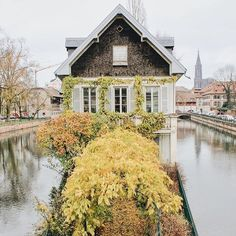 A house with a moat and a fairytale entrance in Strasbourg, France. Oui! Oui! When can I move in? 💛 ............... Have you ever visited a city and saw your dream home? Where?