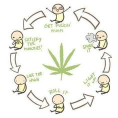Smoking weed cycle