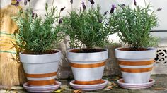 How to paint a terracotta pot