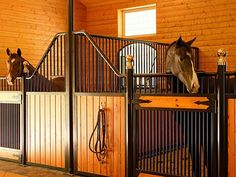 Stable interior with wood and black powder coated stall equipment.
