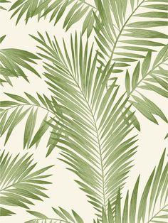 Give your walls character with the Arthouse Green Tropical Palm Wallpaper. This charming wallpaper is perfect to create an accent wall or to cover an entire room with a fun, attractive print that is perfect for your home decor. Palm Leaf Wallpaper, Tropical Wallpaper, Botanical Wallpaper, Metallic Wallpaper, Embossed Wallpaper, Green Wallpaper, Wallpaper Panels, Wallpaper Roll, Peel And Stick Wallpaper