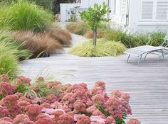 Franchesca Watson | Garden Designer